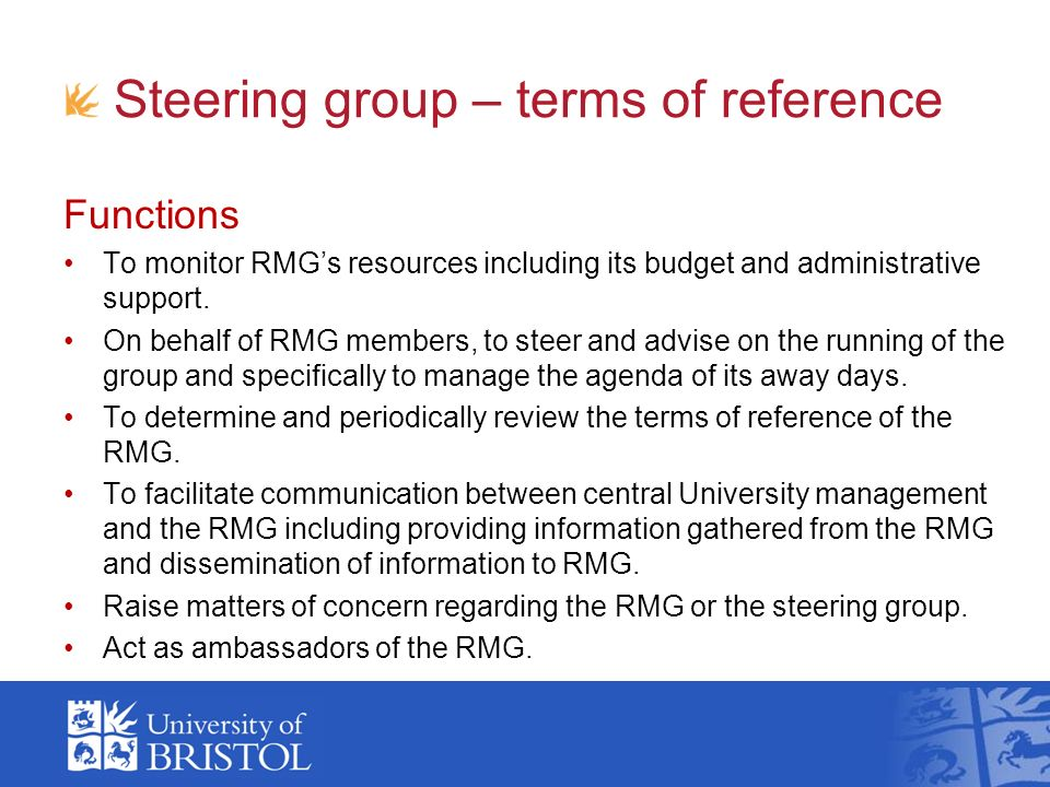 Steering group – terms of reference Functions To monitor RMGs resources including its budget and administrative support. On behalf of RMG members, to