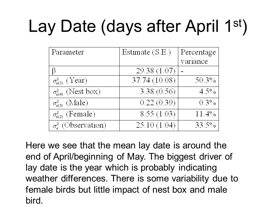 Lay Date (days after April 1 st ) Here we see that the mean lay date is around the end of April/beginning of May.