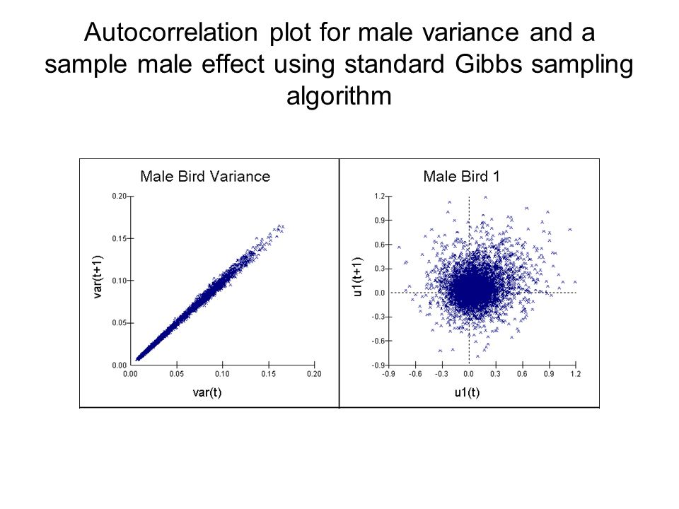 Autocorrelation plot for male variance and a sample male effect using standard Gibbs sampling algorithm