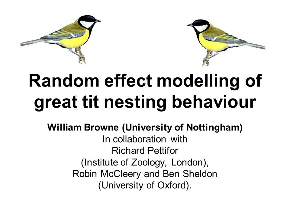Random effect modelling of great tit nesting behaviour William Browne (University of Nottingham) In collaboration with Richard Pettifor (Institute of Zoology, London), Robin McCleery and Ben Sheldon (University of Oxford).