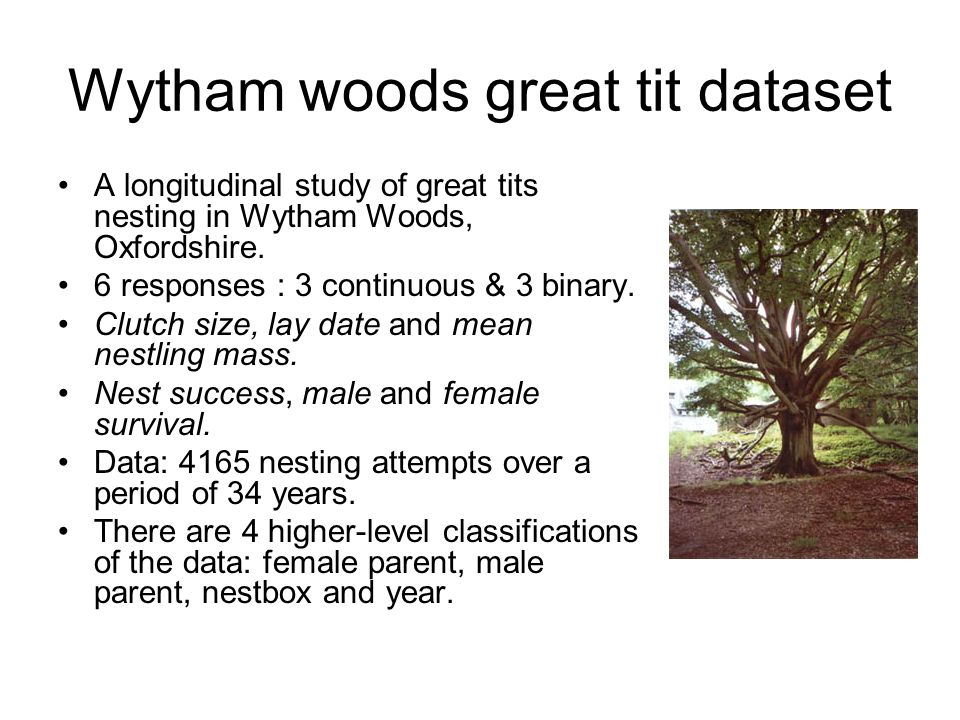Wytham woods great tit dataset A longitudinal study of great tits nesting in Wytham Woods, Oxfordshire. 6 responses : 3 continuous & 3 binary. Clutch
