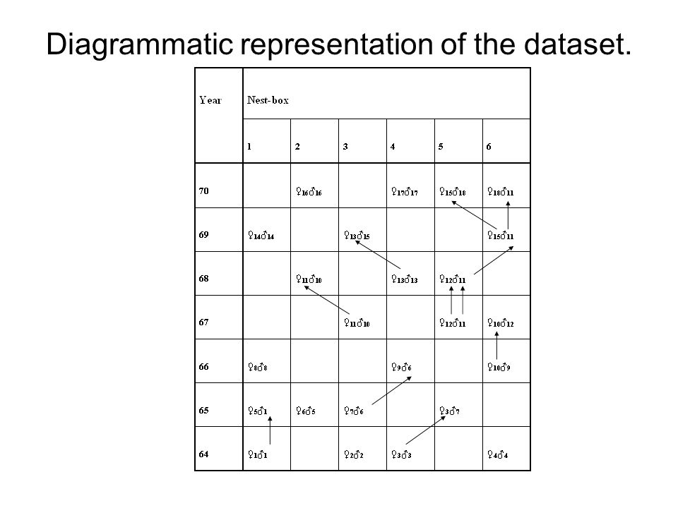 Diagrammatic representation of the dataset.
