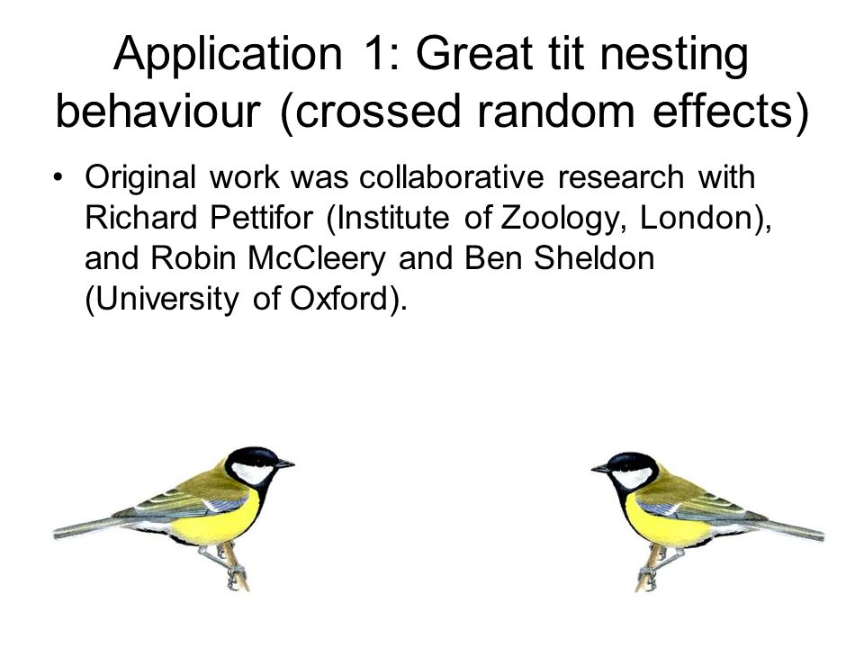 Application 1: Great tit nesting behaviour (crossed random effects) A longitudinal study of great tits nesting in Wytham Woods, Oxfordshire.