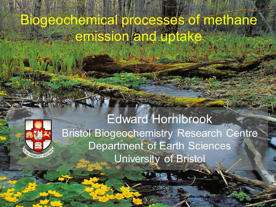 Biogeochemical processes of methane emission and uptake Edward Hornibrook Bristol Biogeochemistry Research Centre Department of Earth Sciences Univers