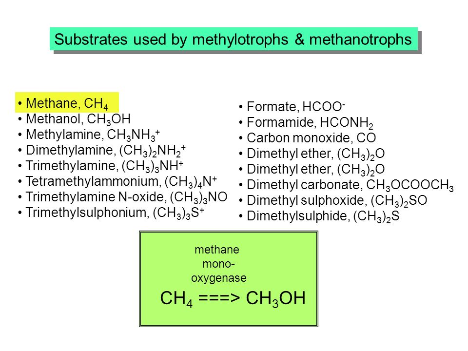 Substrates used by methylotrophs & methanotrophs Methane, CH 4 Methanol, CH 3 OH Methylamine, CH 3 NH 3 + Dimethylamine, (CH 3 ) 2 NH 2 + Trimethylamine, (CH 3 ) 3 NH + Tetramethylammonium, (CH 3 ) 4 N + Trimethylamine N-oxide, (CH 3 ) 3 NO Trimethylsulphonium, (CH 3 ) 3 S + Formate, HCOO - Formamide, HCONH 2 Carbon monoxide, CO Dimethyl ether, (CH 3 ) 2 O Dimethyl carbonate, CH 3 OCOOCH 3 Dimethyl sulphoxide, (CH 3 ) 2 SO Dimethylsulphide, (CH 3 ) 2 S methane mono- oxygenase CH 4 ===> CH 3 OH
