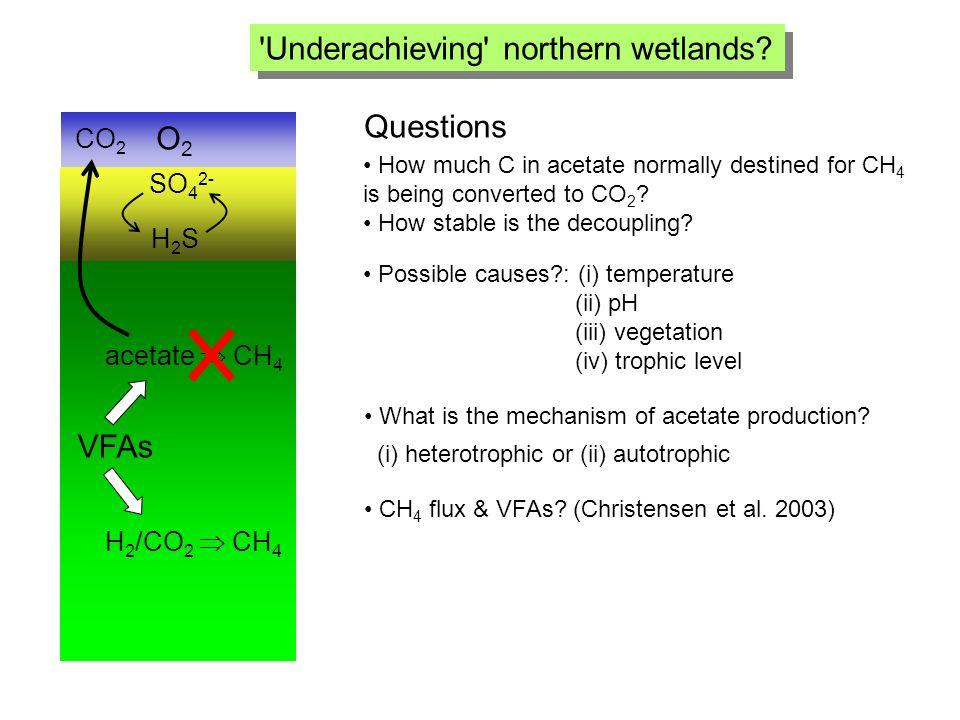 Underachieving northern wetlands.