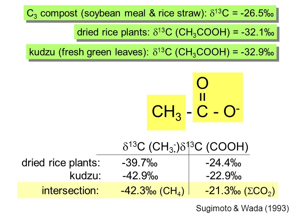 intersection: -42.3 (CH 4 ) -21.3 ( CO 2 ) Sugimoto & Wada (1993) C 3 compost (soybean meal & rice straw): 13 C = -26.5 dried rice plants: -39.7 -24.4 13 C (CH 3 - ) 13 C (COOH) dried rice plants: 13 C (CH 3 COOH) = -32.1 kudzu (fresh green leaves): 13 C (CH 3 COOH) = -32.9 kudzu: -42.9 -22.9 CH 3 - C - O - = O