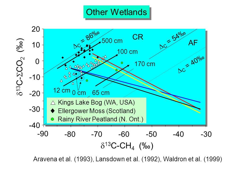 -10 -20 20 10 0 -30 -40-50-60-70-80 -90 13 C-CH 4 () 13 C- CO 2 () -40 Other Wetlands AF CR 12 cm 100 cm Aravena et al.