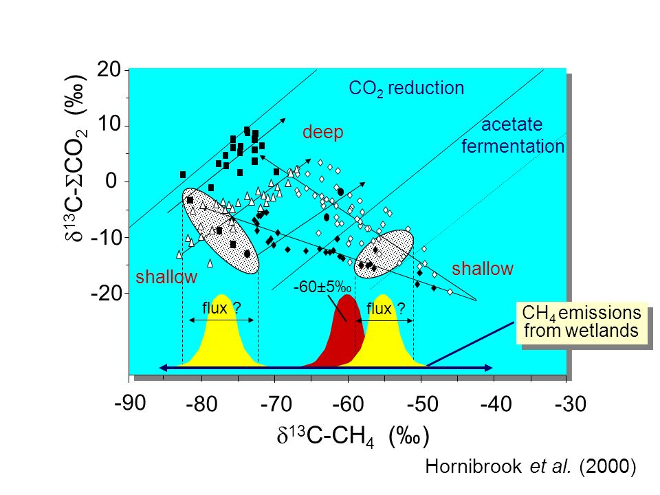 -10 -20 20 10 0 -30-40-50-60-70-80 -90 13 C-CH 4 () 13 C- CO 2 () shallow deep CH 4 emissions from wetlands CH 4 emissions from wetlands CO 2 reduction acetate fermentation -60±5 flux .