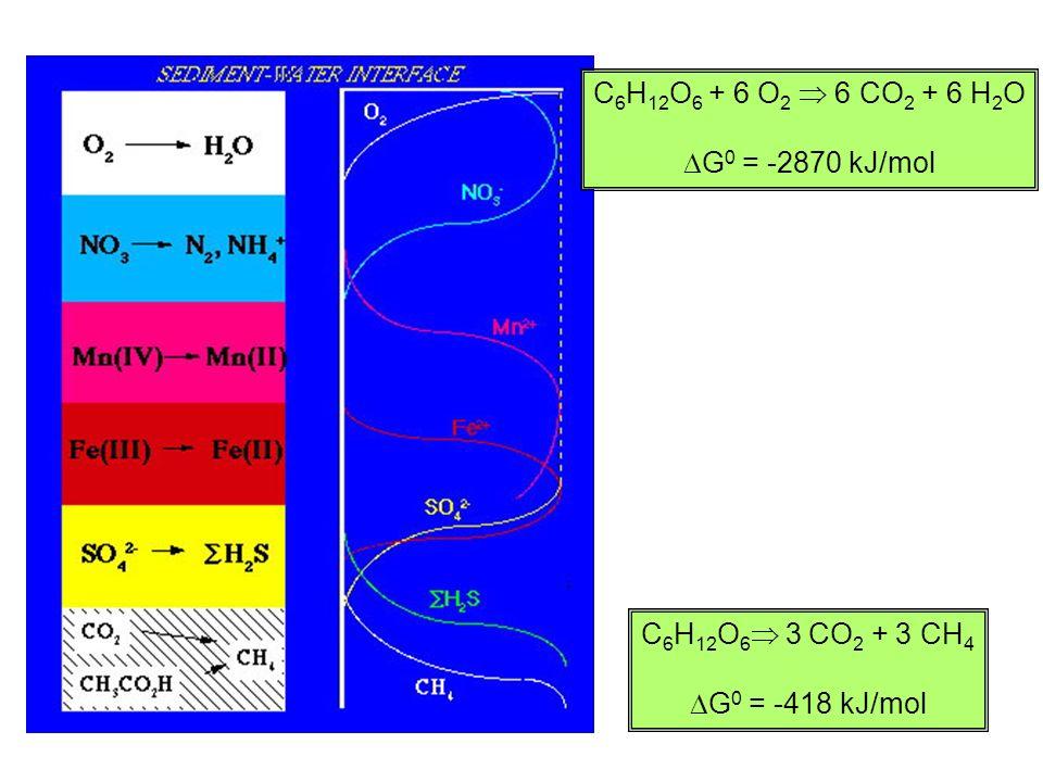 C 6 H 12 O 6 + 6 O 2 6 CO 2 + 6 H 2 O G 0 = -2870 kJ/mol C 6 H 12 O 6 3 CO 2 + 3 CH 4 G 0 = -418 kJ/mol