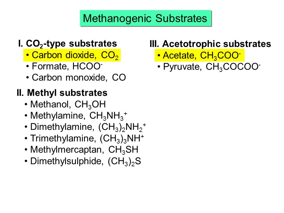 Methanogenic Substrates I.