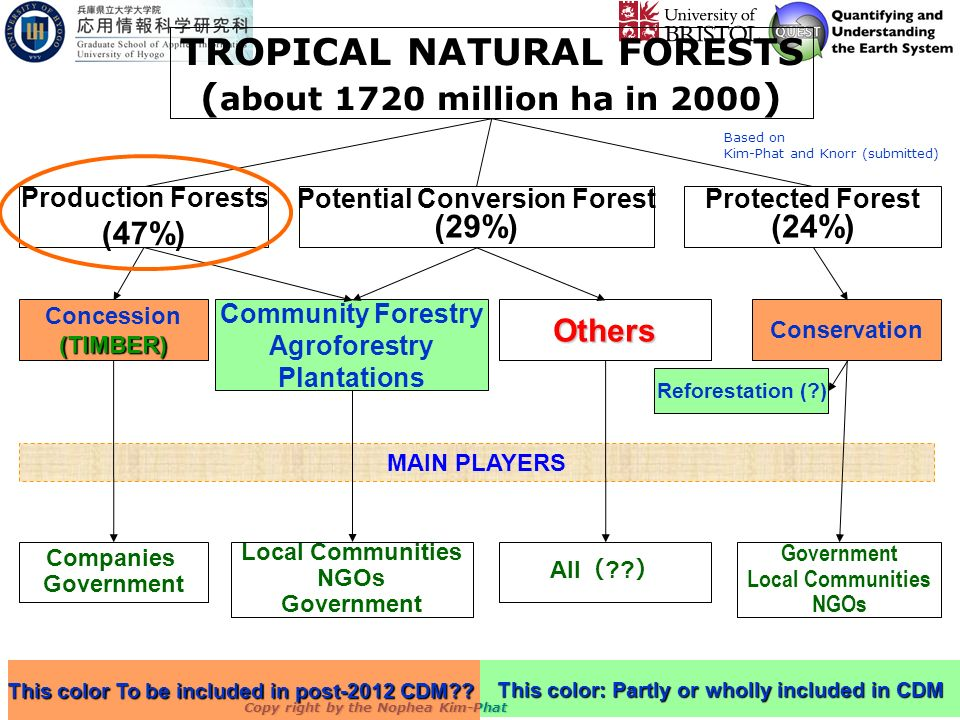 Copy right by the Nophea Kim-Phat TROPICAL NATURAL FORESTS ( about 1720 million ha in 2000 ) Production Forests (47%) Potential Conversion Forest (29%) Protected Forest (24%) Concession(TIMBER) Community Forestry Agroforestry Plantations ConservationOthers MAIN PLAYERS Companies Government Local Communities NGOs Government Local Communities NGOs All ?.