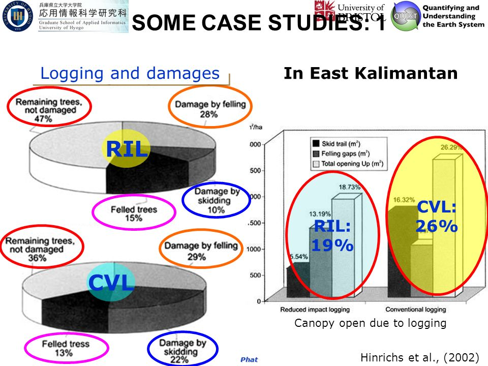 Copy right by the Nophea Kim-Phat SOME CASE STUDIES: 1 Hinrichs et al., (2002) In East Kalimantan RIL: 19% CVL: 26% RIL CVL Canopy open due to logging Logging and damages