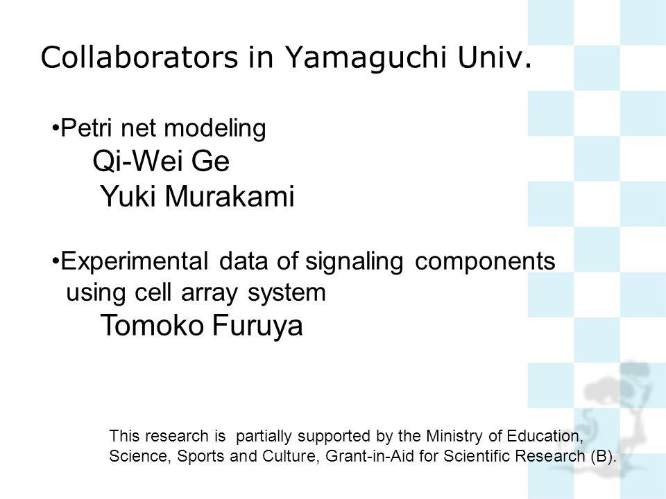 Collaborators in Yamaguchi Univ. Petri net modeling Qi-Wei Ge Yuki Murakami Experimental data of signaling components using cell array system Tomoko F