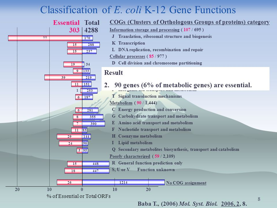 8 Classification of E.