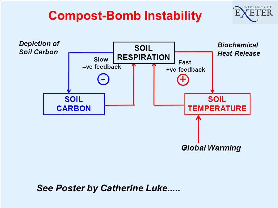 Compost-Bomb Instability SOIL CARBON SOIL TEMPERATURE + Fast +ve feedback Slow –ve feedback - Global Warming See Poster by Catherine Luke.....