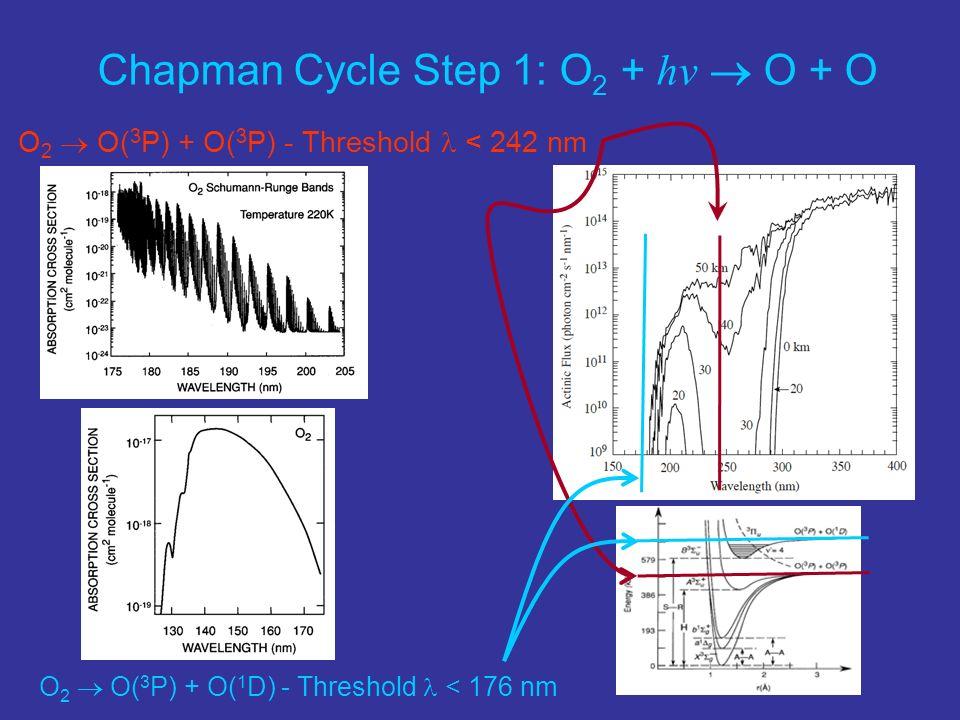 O 2 O( 3 P) + O( 1 D) - Threshold < 176 nm Chapman Cycle Step 1: O 2 + hv O + O O 2 O( 3 P) + O( 3 P) - Threshold < 242 nm