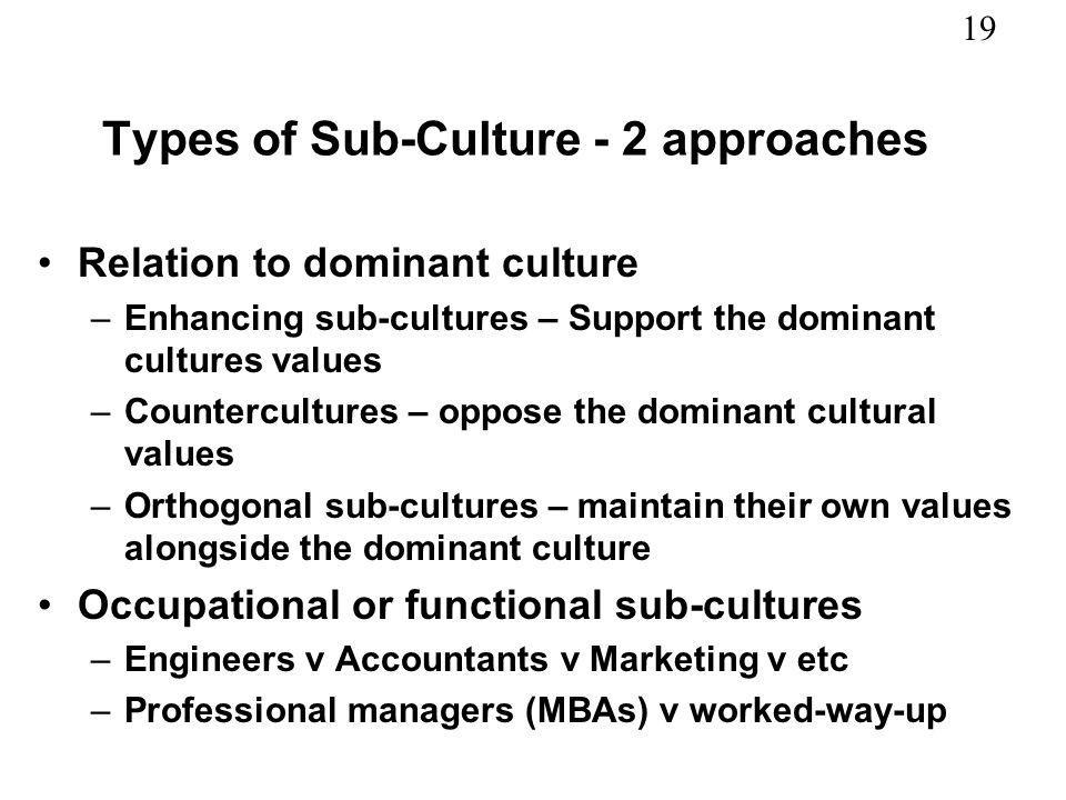 19 Types of Sub-Culture - 2 approaches Relation to dominant culture –Enhancing sub-cultures – Support the dominant cultures values –Countercultures –