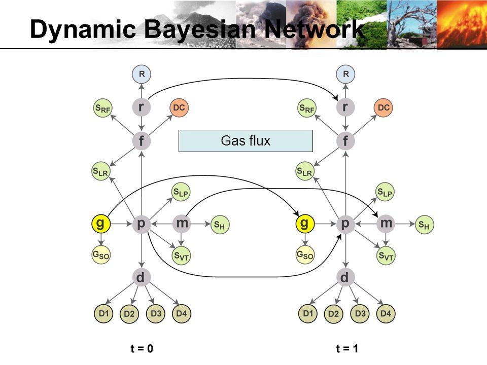 Dynamic Bayesian Network Gas flux