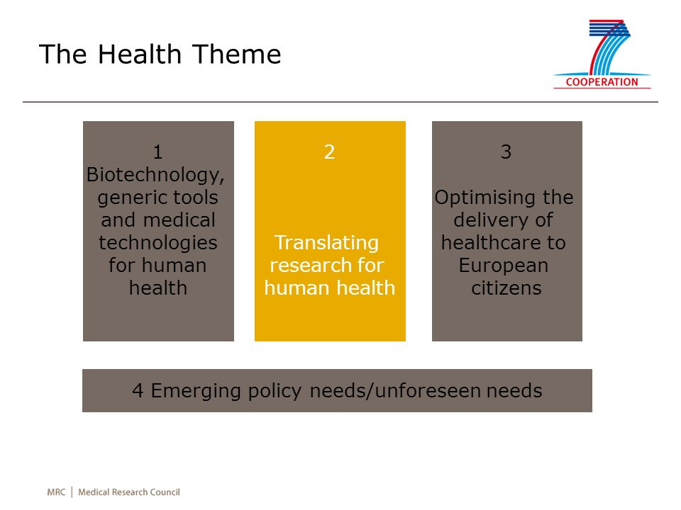 The Health Theme 1 Biotechnology, generic tools and medical technologies for human health 2 Translating research for human health 3 Optimising the del