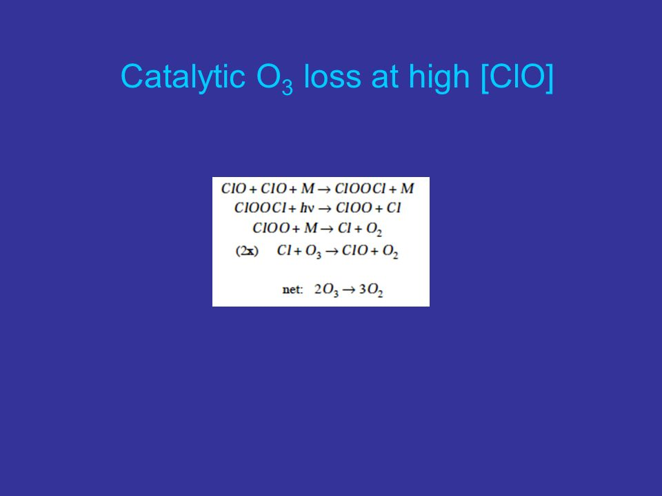 Catalytic O 3 loss at high [ClO]