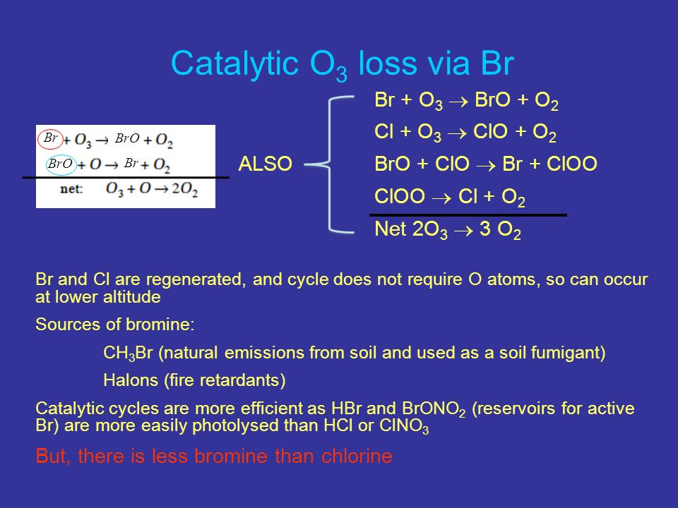 Br + O 3 BrO + O 2 Cl + O 3 ClO + O 2 ALSOBrO + ClO Br + ClOO ClOO Cl + O 2 Net 2O 3 3 O 2 Br and Cl are regenerated, and cycle does not require O atoms, so can occur at lower altitude Sources of bromine: CH 3 Br (natural emissions from soil and used as a soil fumigant) Halons (fire retardants) Catalytic cycles are more efficient as HBr and BrONO 2 (reservoirs for active Br) are more easily photolysed than HCl or ClNO 3 But, there is less bromine than chlorine Catalytic O 3 loss via Br Br BrO Br