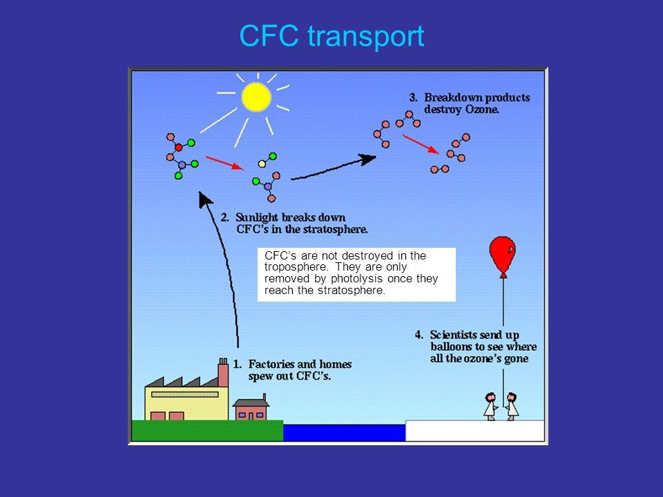CFCs are not destroyed in the troposphere.