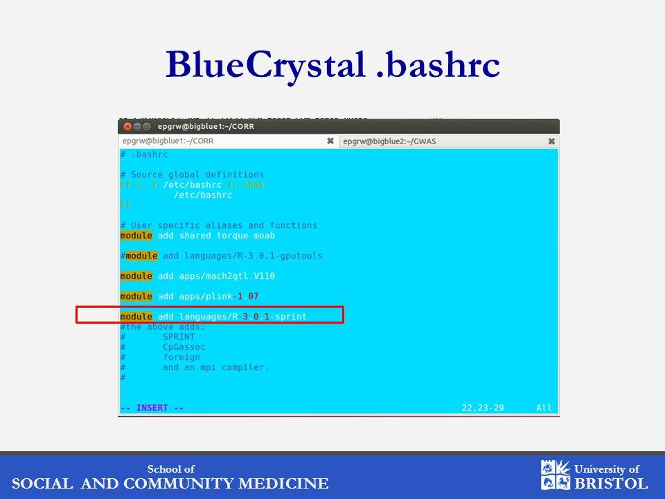 School of SOCIAL AND COMMUNITY MEDICINE University of BRISTOL BlueCrystal.bashrc