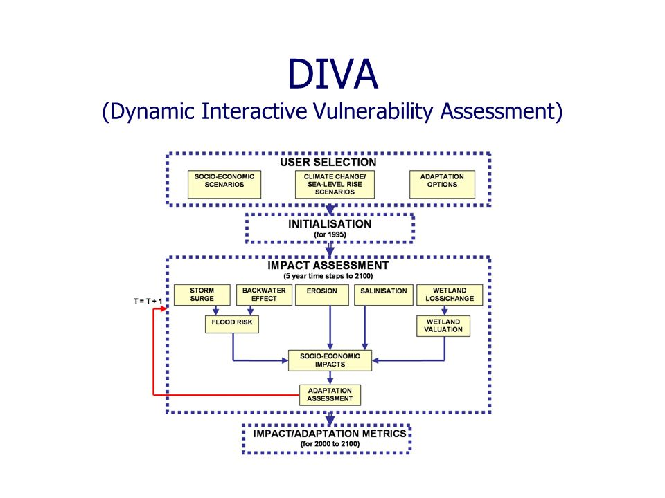 DIVA (Dynamic Interactive Vulnerability Assessment)
