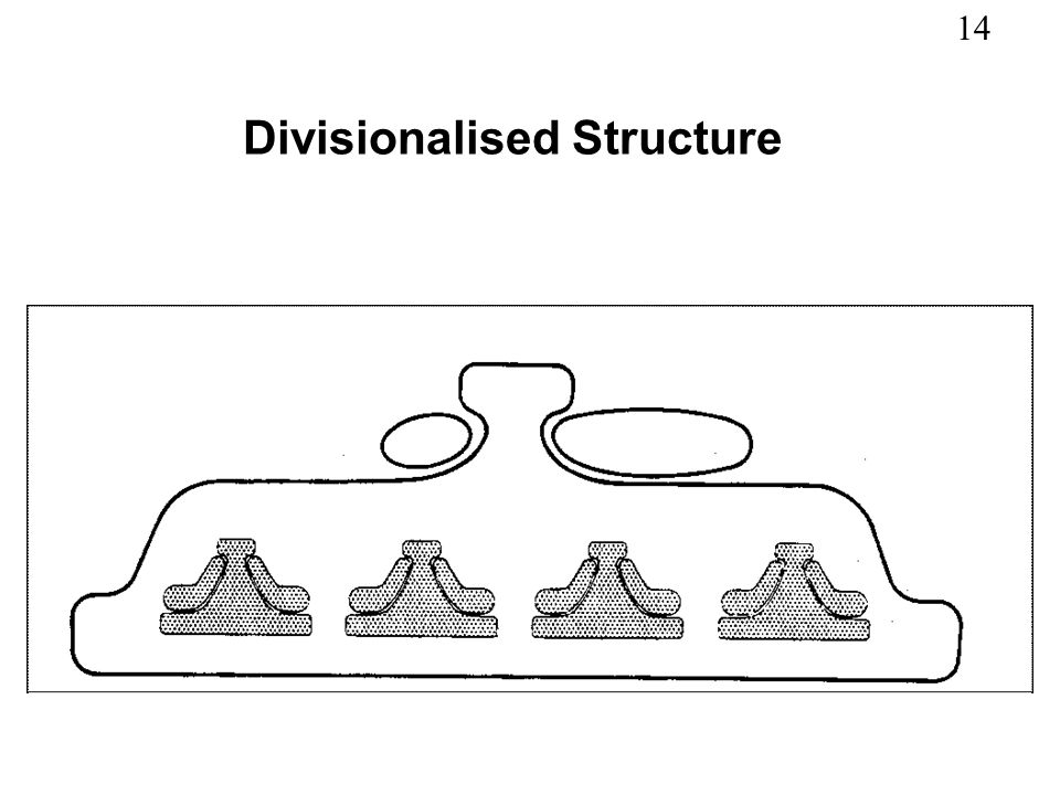 14 Divisionalised Structure