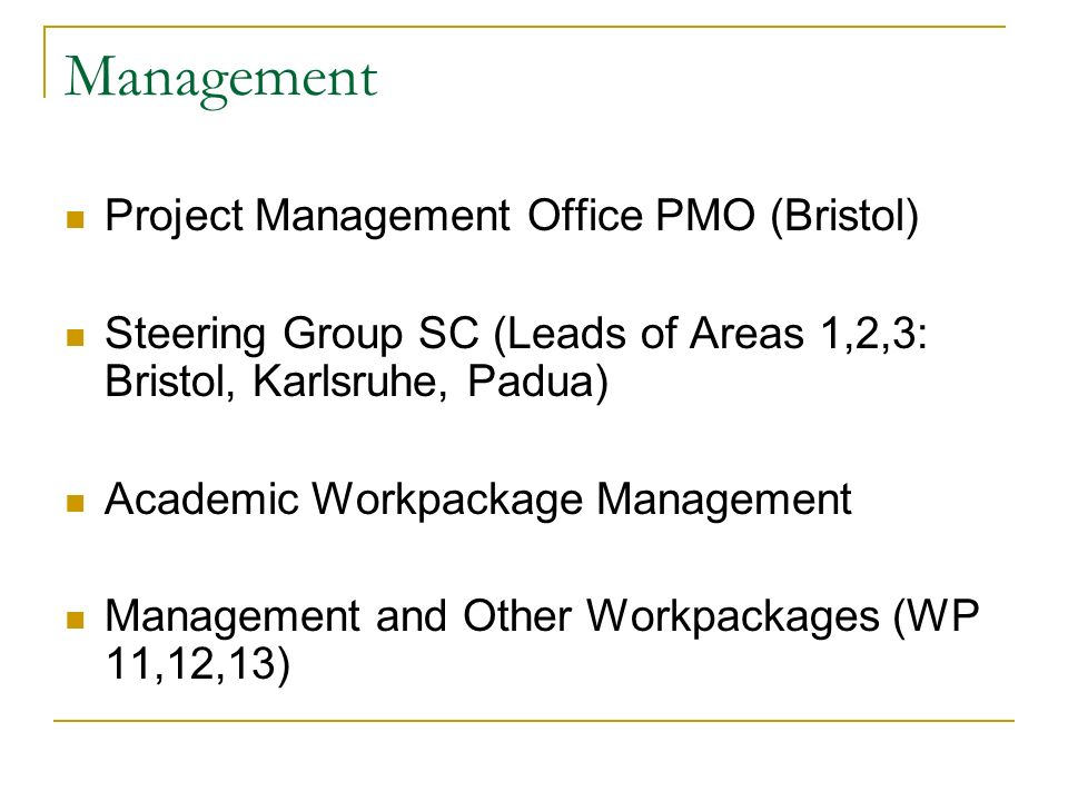 Management Project Management Office PMO (Bristol) Steering Group SC (Leads of Areas 1,2,3: Bristol, Karlsruhe, Padua) Academic Workpackage Management Management and Other Workpackages (WP 11,12,13)