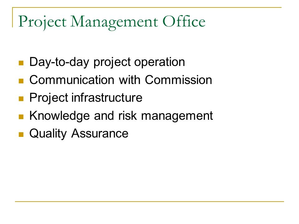 Project Management Office Day-to-day project operation Communication with Commission Project infrastructure Knowledge and risk management Quality Assurance