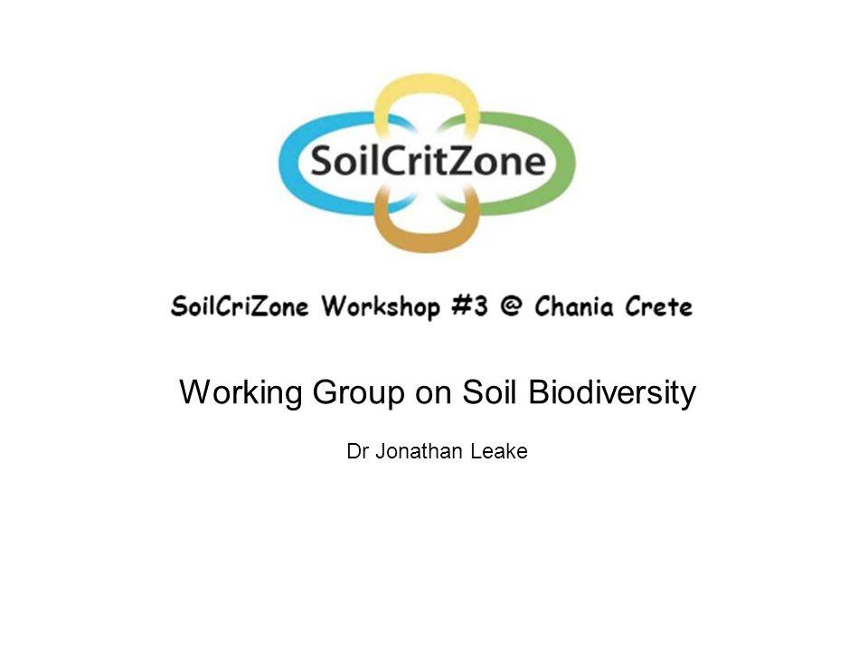 Working Group on Soil Biodiversity Dr Jonathan Leake