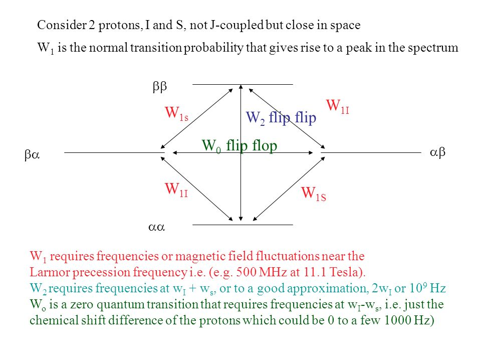 W 2 flip flip W 0 flip flop Consider 2 protons, I and S, not J-coupled but close in space W 1s W 1I W 1S W 1I W 1 is the normal transition probability