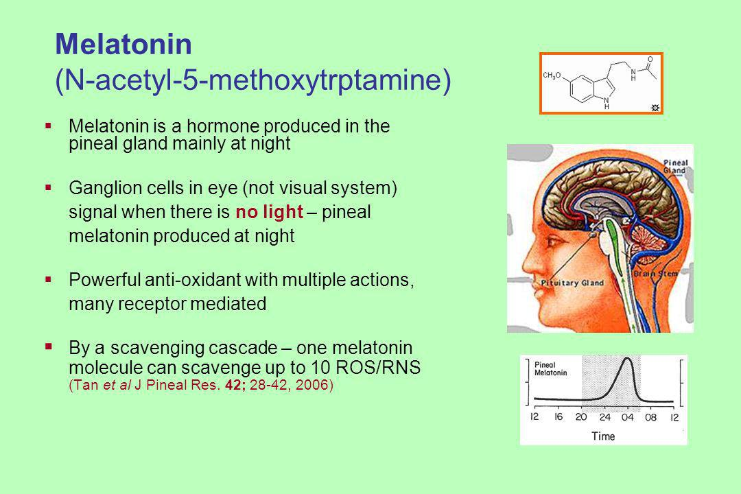 Melatonin (N-acetyl-5-methoxytrptamine) Melatonin is a hormone produced in the pineal gland mainly at night Ganglion cells in eye (not visual system) signal when there is no light – pineal melatonin produced at night Powerful anti-oxidant with multiple actions, many receptor mediated By a scavenging cascade – one melatonin molecule can scavenge up to 10 ROS/RNS (Tan et al J Pineal Res.