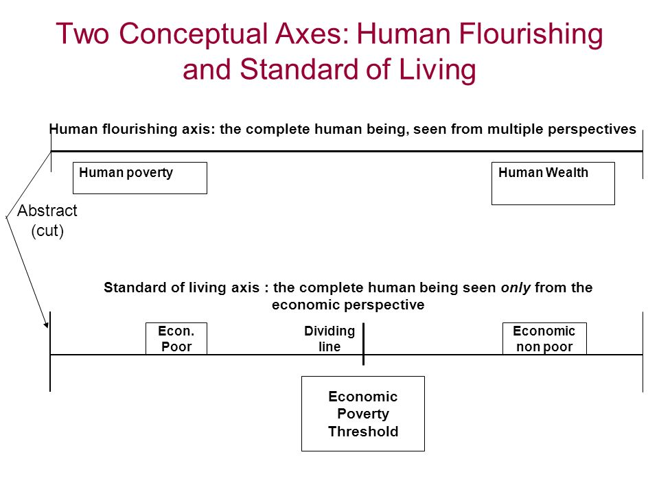 Two Conceptual Axes: Human Flourishing and Standard of Living Standard of living axis : the complete human being seen only from the economic perspecti