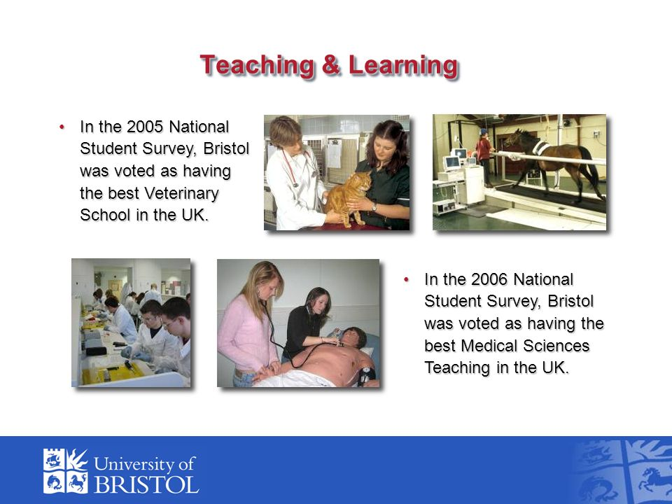 In the 2006 National Student Survey, Bristol was voted as having the best Medical Sciences Teaching in the UK.In the 2006 National Student Survey, Bri