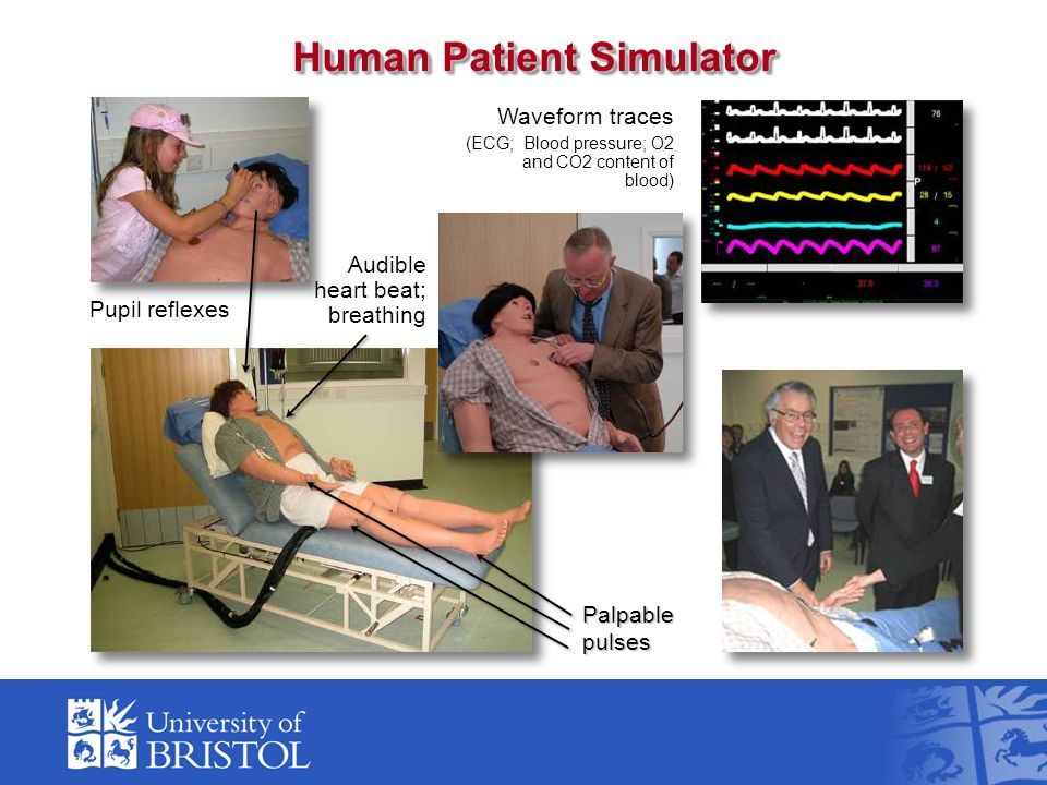 Audible heart beat; breathing Pupil reflexes Palpable pulses Waveform traces (ECG; Blood pressure; O2 and CO2 content of blood) Human Patient Simulator