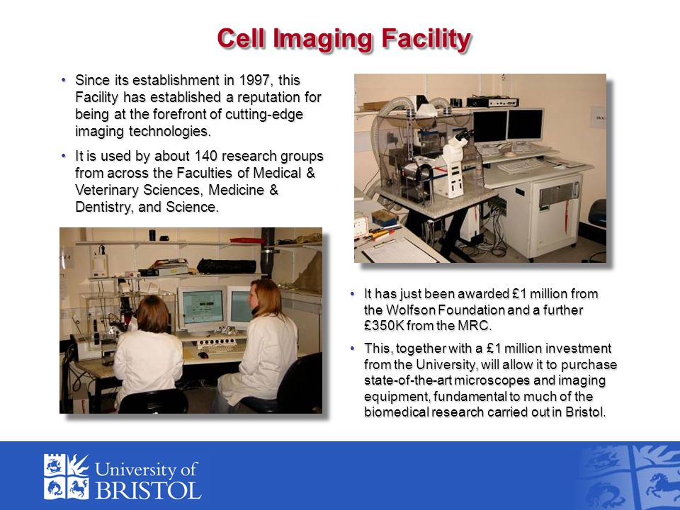 Since its establishment in 1997, this Facility has established a reputation for being at the forefront of cutting-edge imaging technologies.Since its establishment in 1997, this Facility has established a reputation for being at the forefront of cutting-edge imaging technologies.