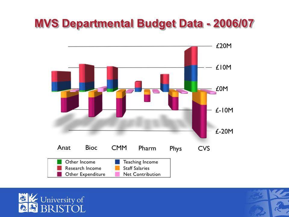 MVS Departmental Budget Data - 2006/07