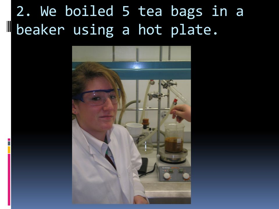 2. We boiled 5 tea bags in a beaker using a hot plate.