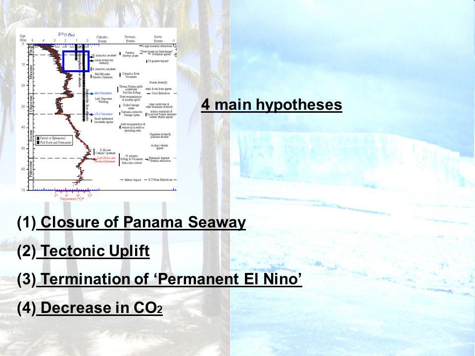 (1) Closure of Panama Seaway (2) Tectonic Uplift (3) Termination of Permanent El Nino (4) Decrease in CO 2 4 main hypotheses