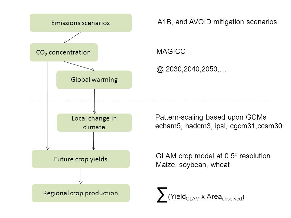 Emissions scenarios CO 2 concentration Local change in climate Future crop yields Global warming Regional crop production A1B, and AVOID mitigation sc