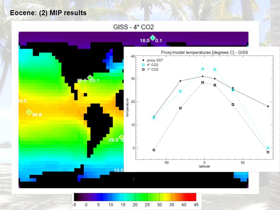 Eocene: (2) MIP results