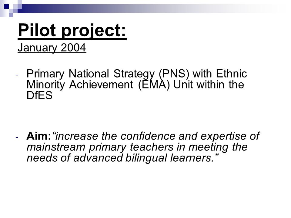 Pilot project: January Primary National Strategy (PNS) with Ethnic Minority Achievement (EMA) Unit within the DfES - Aim:increase the confidence and expertise of mainstream primary teachers in meeting the needs of advanced bilingual learners.