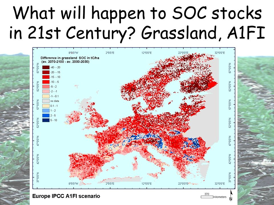 What will happen to SOC stocks in 21st Century? Grassland, A1FI