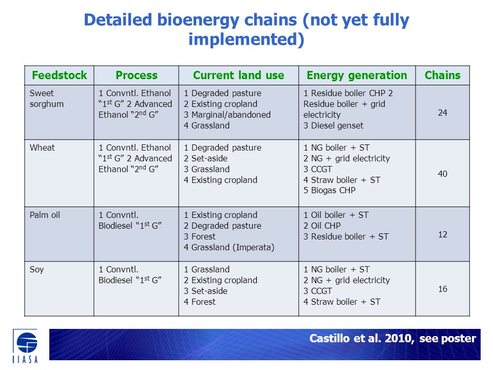 Detailed bioenergy chains (not yet fully implemented) Castillo et al.