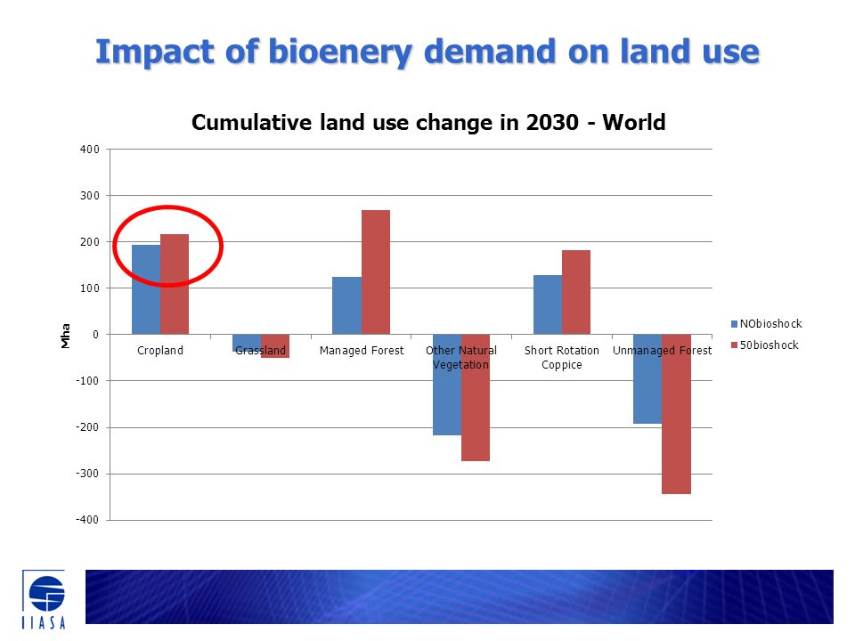 Impact of bioenery demand on land use