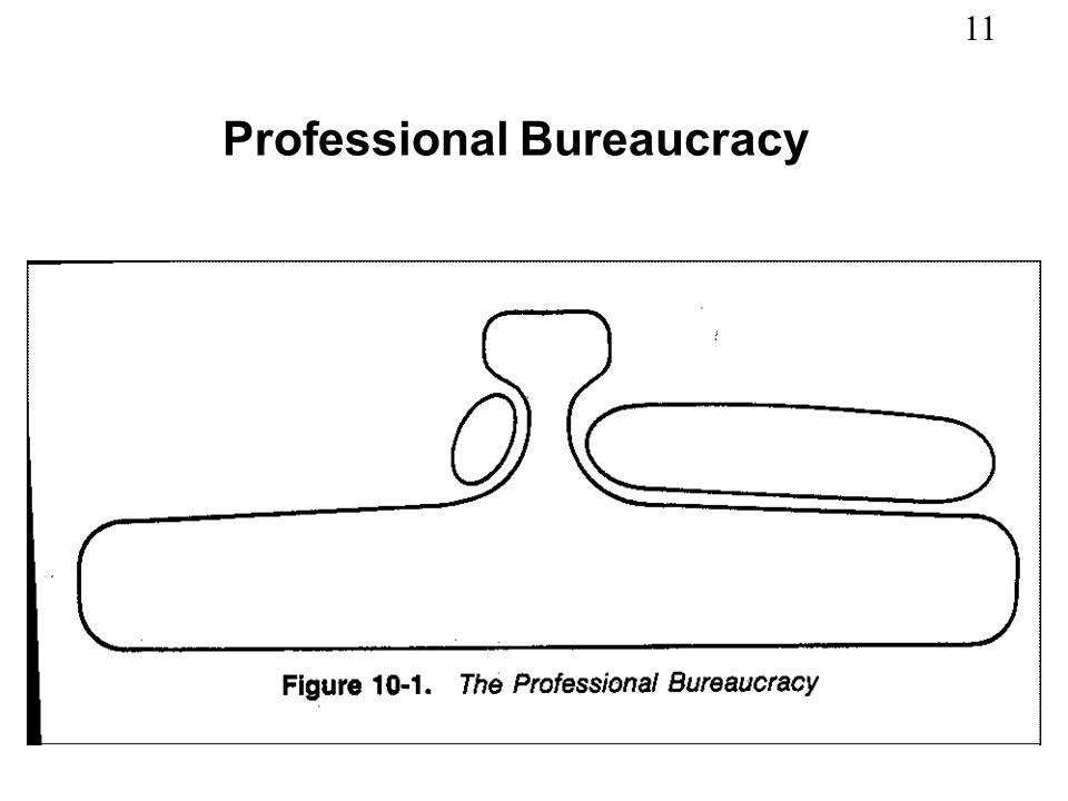 11 Professional Bureaucracy