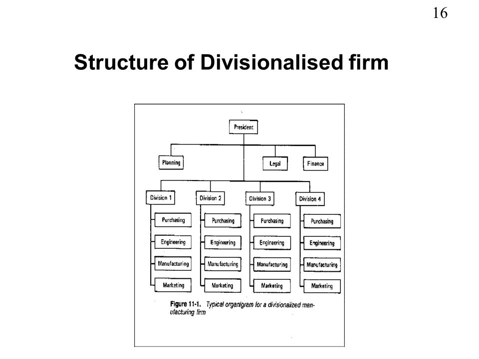 16 Structure of Divisionalised firm